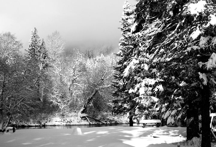 Winter Scene B&W - David Russell Photography