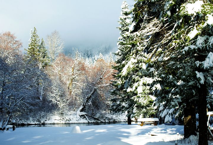 Winter Scene - David Russell Photography