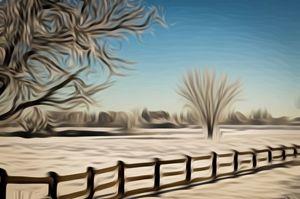 Blue Skies-Snowy Field