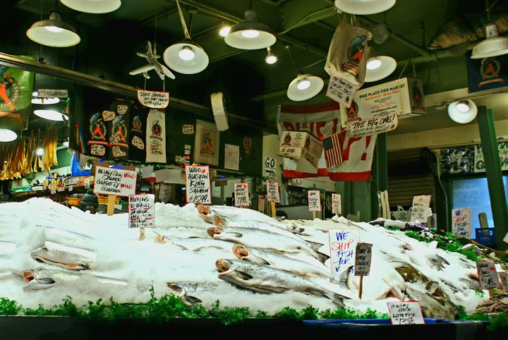 At the Fish Market - David Russell Photography