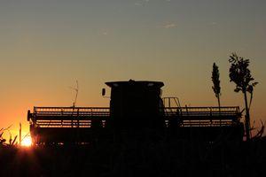Combine Silhouette in a farm field