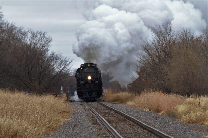 Big Boy 4014 with tree's,and Steam - Robert D Brozek