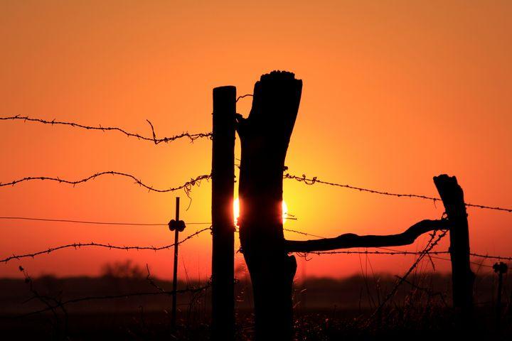 Kansas Fence Line sunset silhouette - Robert D Brozek