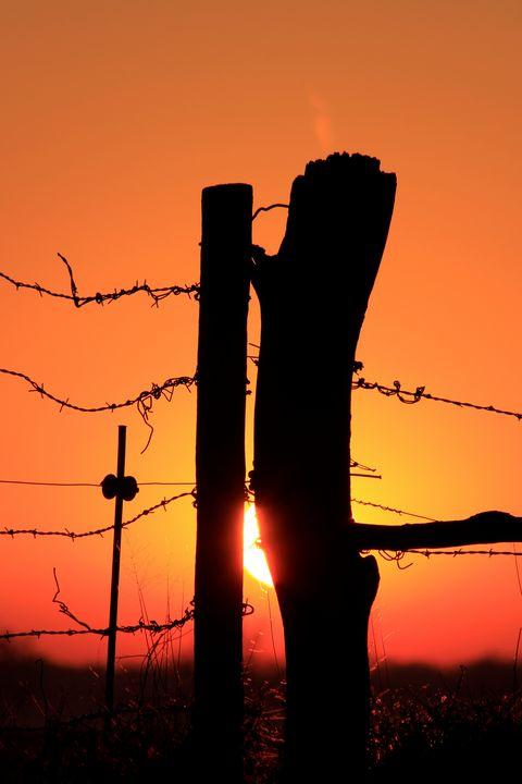 Kansas Fence Line Sunset Silhouette. - Robert D Brozek