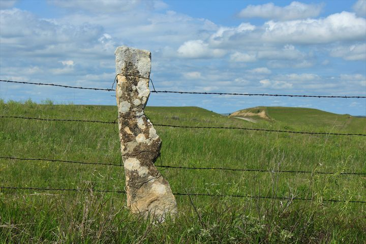 Lime Stone Fence North of Lucas KS - Robert D Brozek