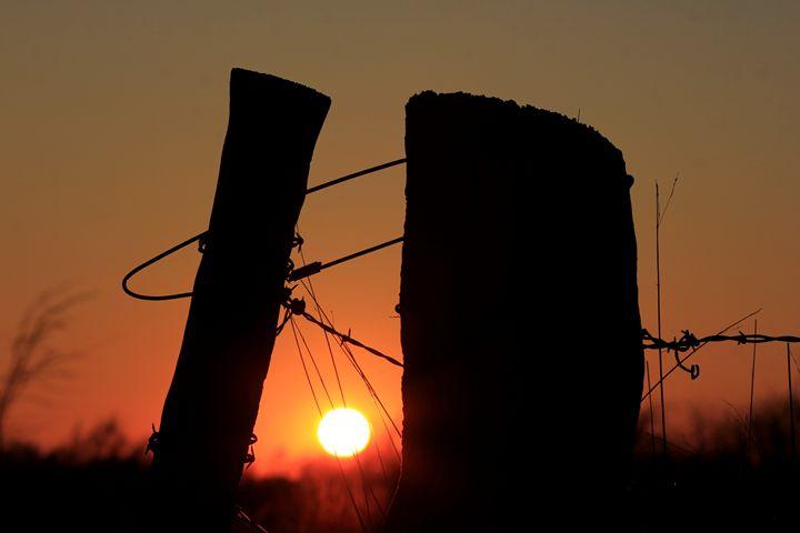 Kansas Fence Line Silhouette - Robert D Brozek