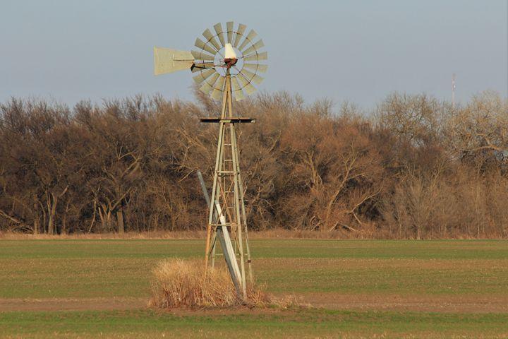 Kansas Windmill in a Wheat Field - Robert D Brozek
