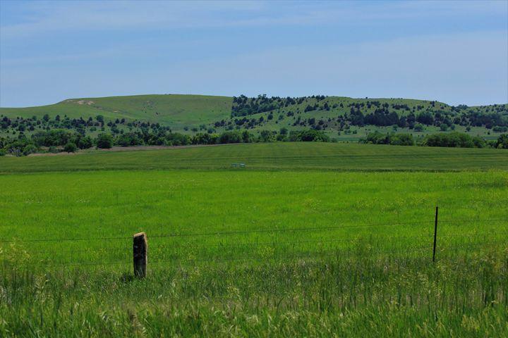 Kansas Green Meadow with a Fence - Robert D Brozek