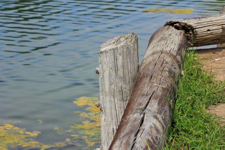 By the water's edge - Robert D Brozek