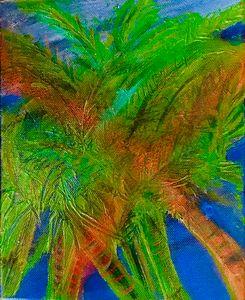 Many Palms