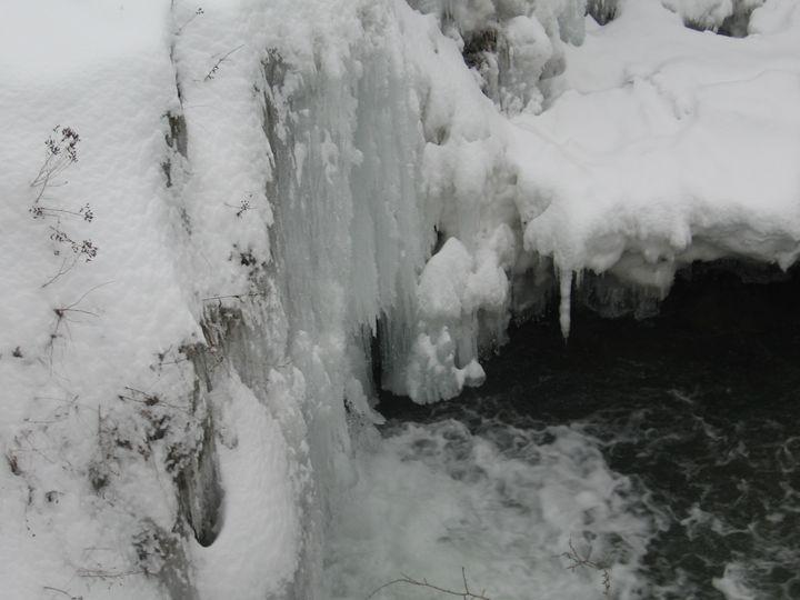 Frozen - Goran PHOTO