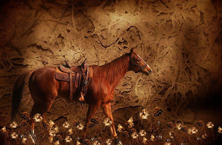 Flowers for the Horse Show - Deborah Zaragoza