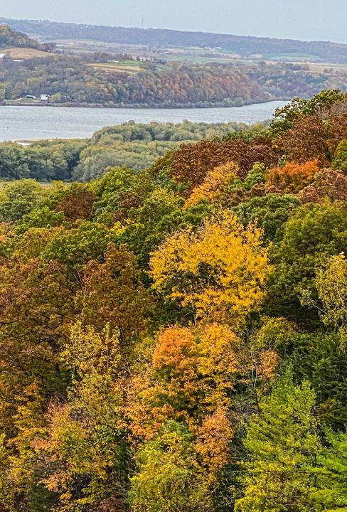 Autumn Tooling: Chestnut Mountain - Vickielynne