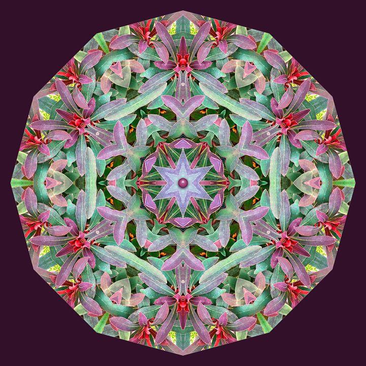 Colorful Shrubbery Mandala - Digital Crafts