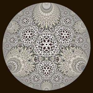 Hyperbolic Lichen