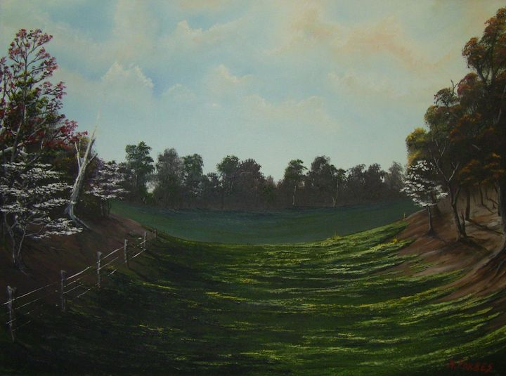 Spring Pasture - Country Life by Heath Forbes