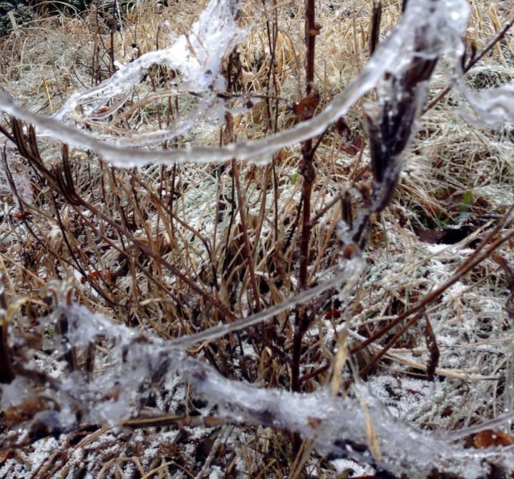 After the Ice Storm - Jinxtastic