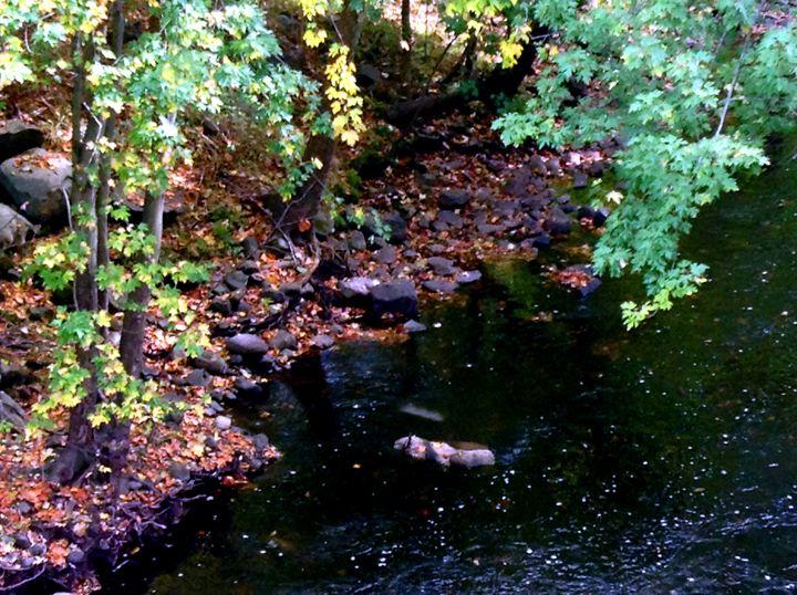 Rocky Riverbank - Jinxtastic