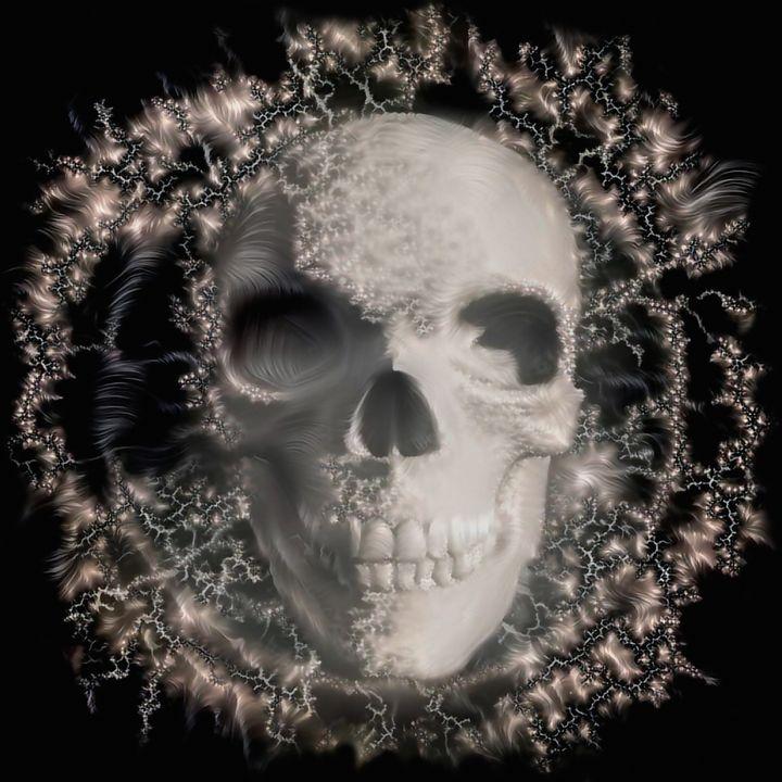 Human Skull - rolffimages