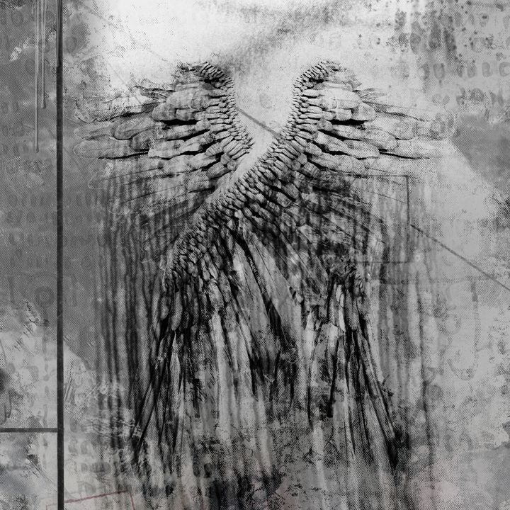 Angels wings - rolffimages
