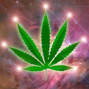 Constellation marijuana