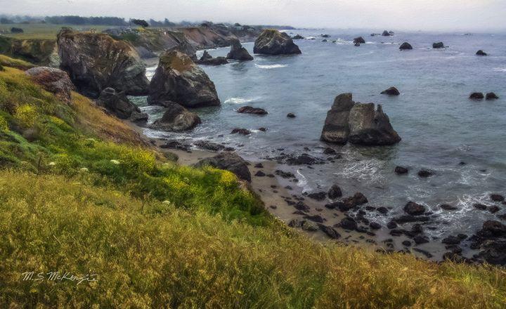 Northern California Coastline - Saco River Art & Photography