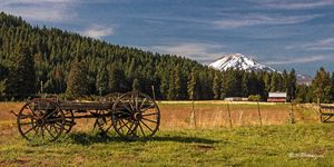Old Homestead, Mount Adams, WA