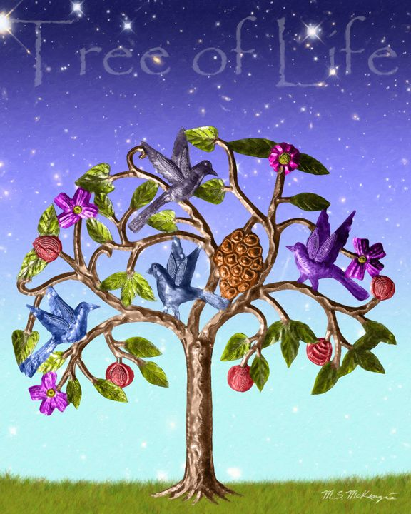 Tree of Life - Saco River Art & Photography