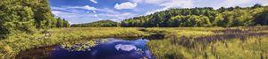 Pretty Marsh Acadia National Park - Saco River Art & Photography