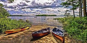 Boys  of Summer - Saco River Art & Photography
