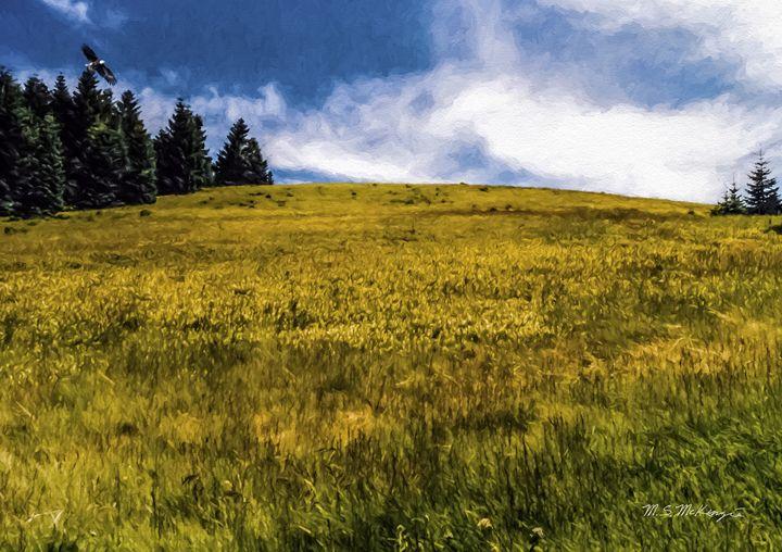 Where eagles soar, Mary's Peak, OR - Saco River Art & Photography