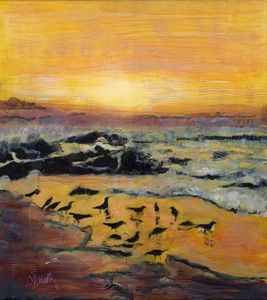 Oyster Catchers at Sunset