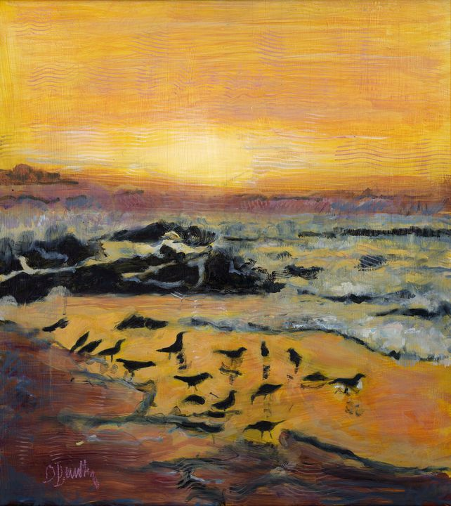 Oyster Catchers at Sunset - BarX