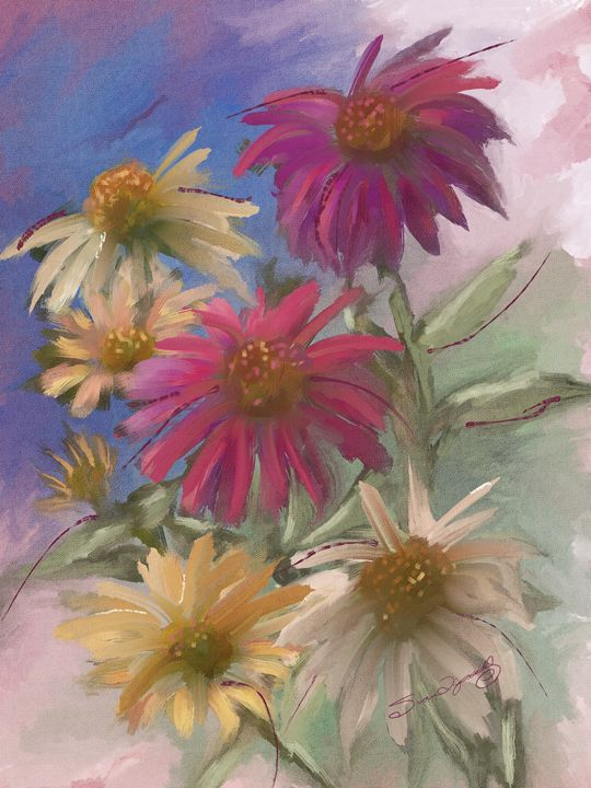 CONEFLOWER MEDLEY - SHAYNA PHOTOGRAPHY