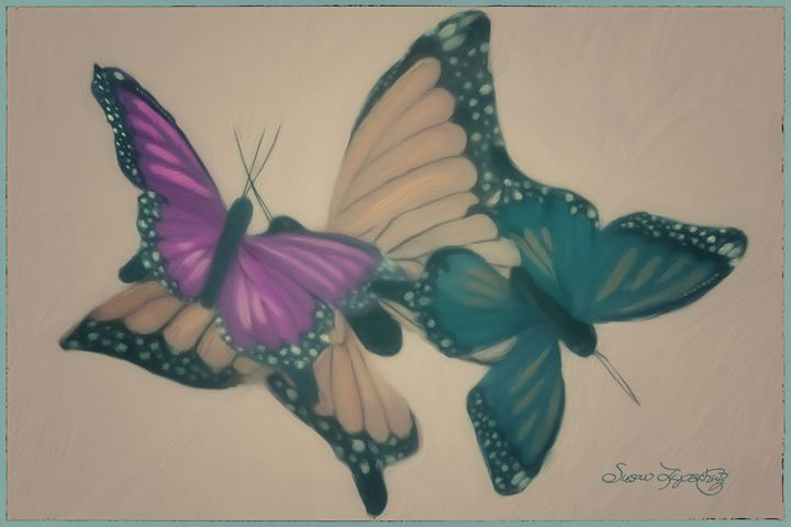 BUTTERFLY COLLAGE - SHAYNA PHOTOGRAPHY