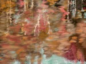 FALL REFLECTIONS by susan lipschutz