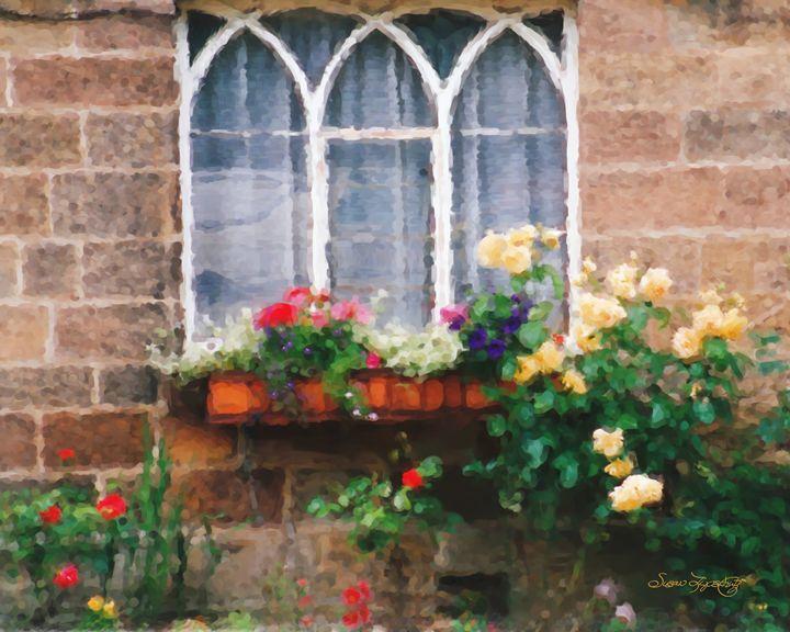 WINDOW BOX - SHAYNA PHOTOGRAPHY