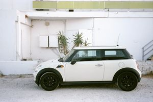 Mini and palm trees against the wall