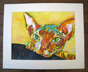 Canadian Sphynx Cat, handpainted