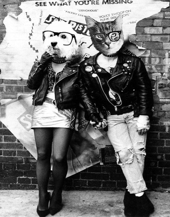 Sid and Fancy - Amor Libertas Pop Prints