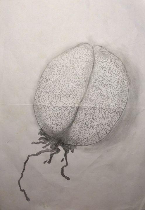 Mind gone crazy - John's Sketches