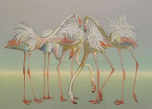 flamingo - natalija's gallery