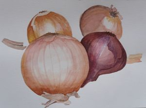 onions - natalija's gallery