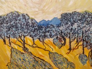 Olive grove. Evening