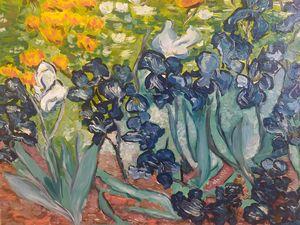 Irises purple and white