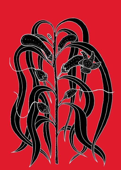 Emu Bush - Eremophila longifolia - Ivos Art