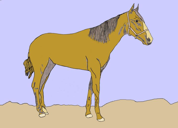 Horse 1 - Ivos Art