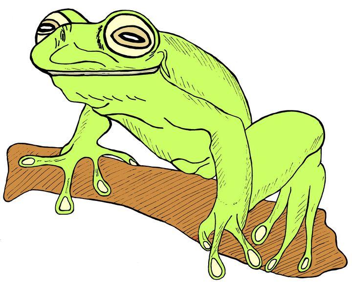 Frog 6c - Ivos Art