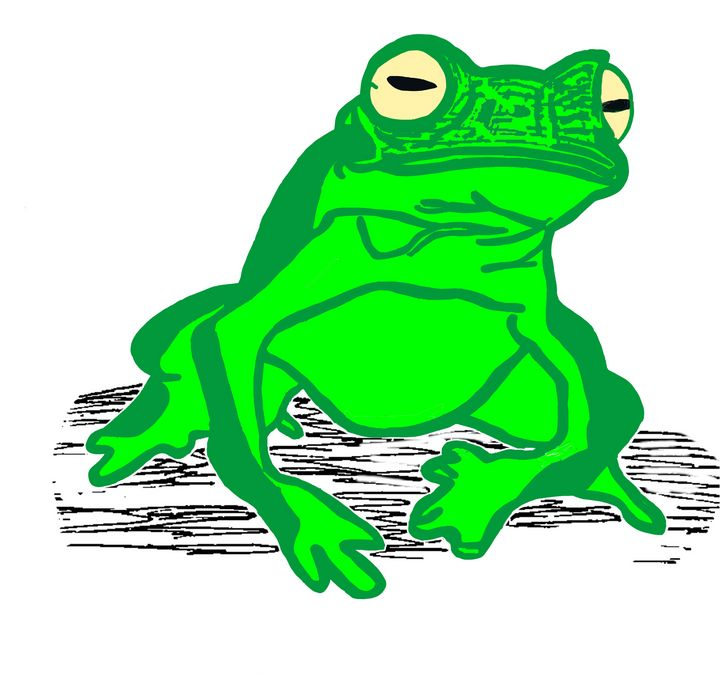 Big Green Frog - Ivos Art