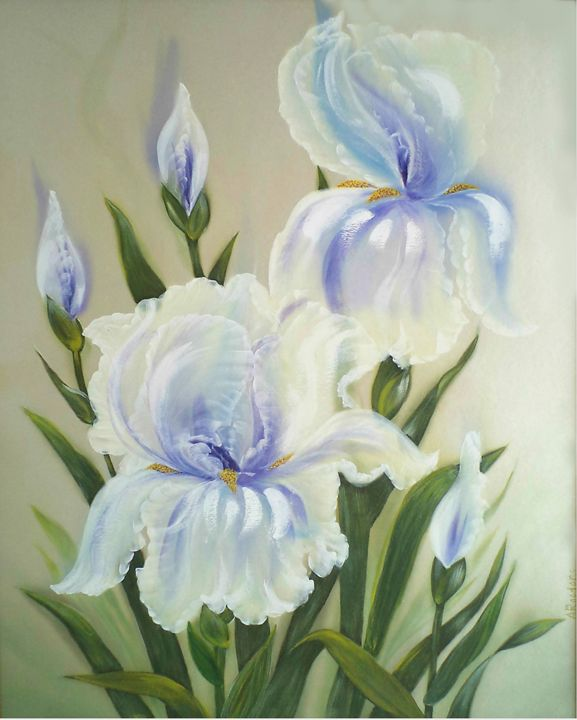 Blue Irises. - Angelina
